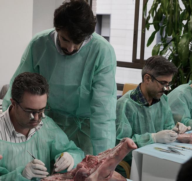 El doctor del Grupo PerioCentrum durante el curso.