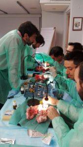 curso Regeneración Ósea en Cirugía de Implantes