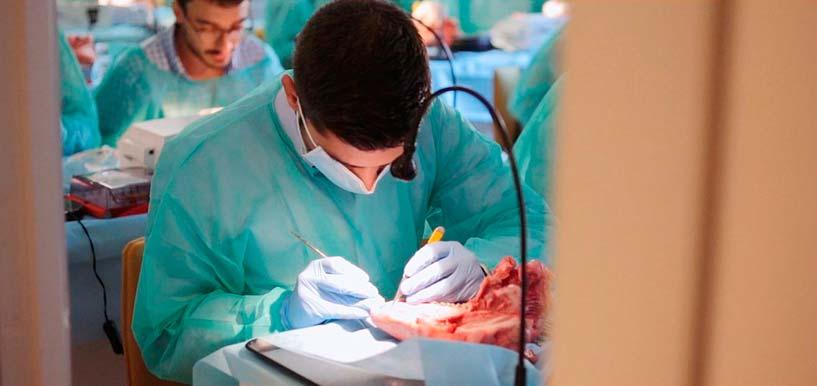 Cursos Periodoncia e Implantes dentales